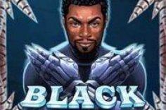 Play Black Rider